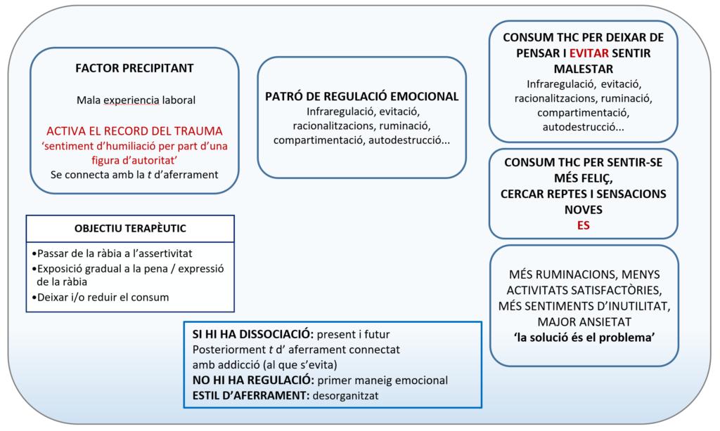 Anàlisi funcional de la conducta addictiva